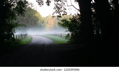 Countryside road with fog in the morning