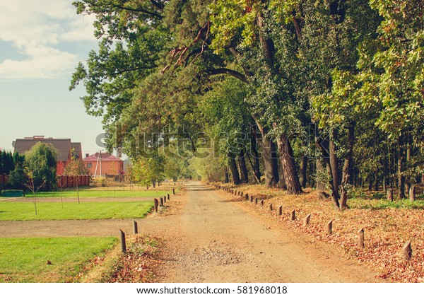 Countryside road near the forest horizontal