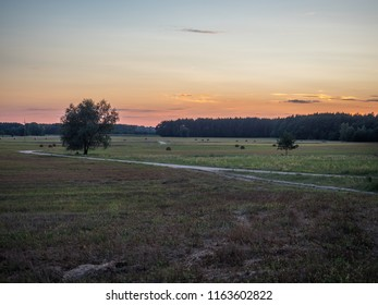 A countryside road. Podlasie. Podlachia. Poland, Europe. The region is called Podlasko or Podlasze. Panoramic view.