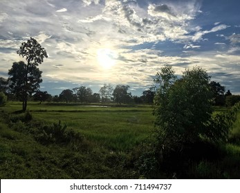 Countryside in the sun