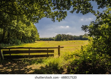 The Countryside of Twente, The Netherlands, near Oldenzaal
