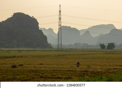 countryside in Vietnam