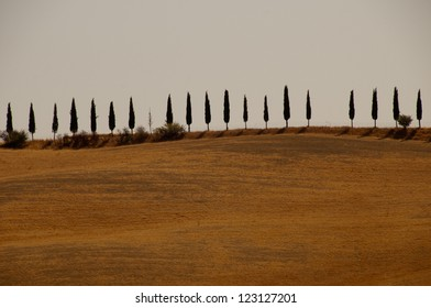 Countryside view in Tuscany, Italy