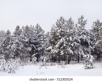 Countryside winter landscape