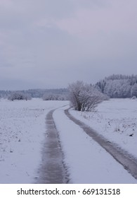 countryside winter road in forest