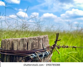 Countryside wire fence pole with grass landscape - Shutterstock ID 1900785088