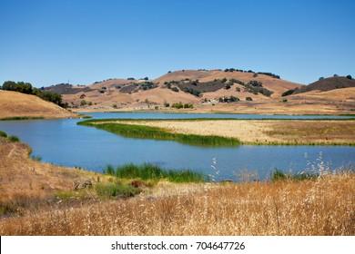 County park. San Jose. California. USA