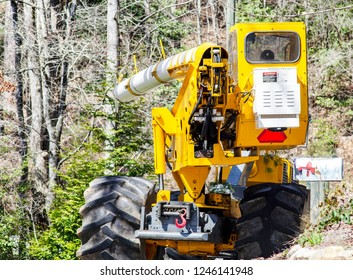 County Worker Cutting Trees on a Road