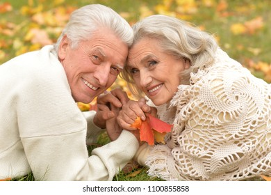 couple in autumn park lying