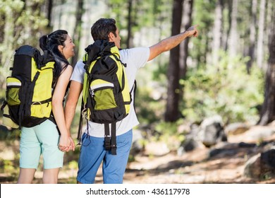 Couple from the back pointing and holding hands on the wood
