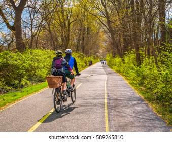 Couple biking on urban bike path in city with dog in basket