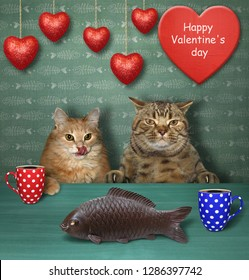 The couple of cats in love drinks coffee in a funny cafe. The big chocolate fish is in front of them. Valentine's day.
