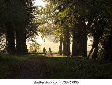 Couple cycling in the forest with bicycles outdoors in Holland, the Netherlands