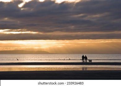 Couple with dogs in silhouette walking on the beach as light rays beam down from the setting sun. White Rock BC, Canada. A heron is also seen in the water.