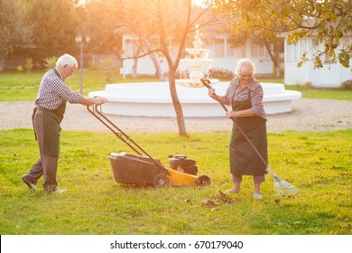 Couple of elderly gardeners working. Lawn mower and rake. How to keep garden clean.