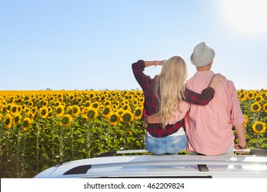 Couple embrace sitting car roof sunflowers field sunrise rear view, blue sky outdoor nature