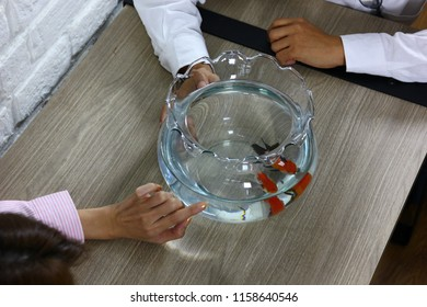the couple are enjoy with their new hobby,couple  have  new pet goldfish