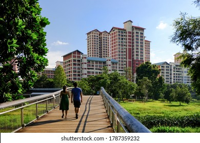 Couple enjoying afternoon walk in lush green neighbourhood park on bright sunny day. High rise public housing (HDB flats) in the background, Singapore