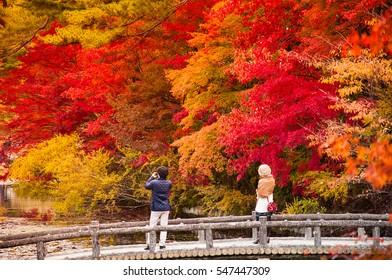 Couple enjoying a beautiful autumn park in Hyogo, Japan