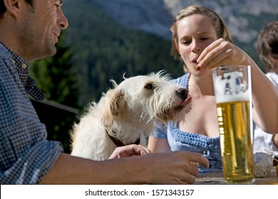 Couple feeding dog at picnic table, beer in foreground