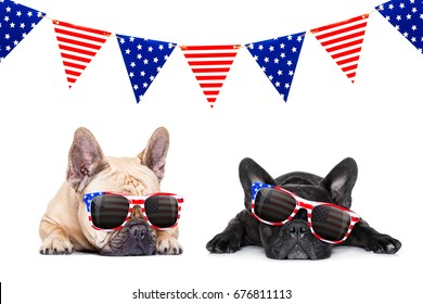 couple french bulldog dogs celebrating  independence day 4th of july with  sunglasses,  isolated on white background