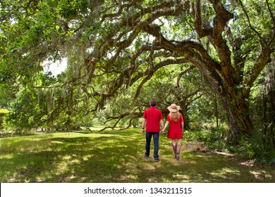 Couple holding hands enjoying time together in the garden. Couple walking in the park under beautiful oak trees wth spanish moss. Magnolia Plantation and Gardens, Charleston, South Carolina, USA