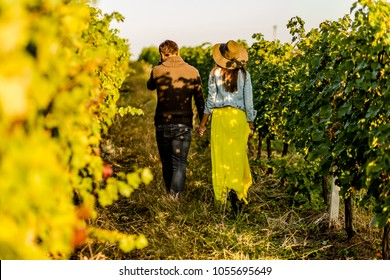 Couple holding hands at sunset in a winery filed