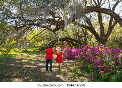 Couple holding hands walking in the bloomig garden under oak trees. People walking in the park enjoying time together. Magnolia Plantation and Gardens, Charleston, South Carolina, USA