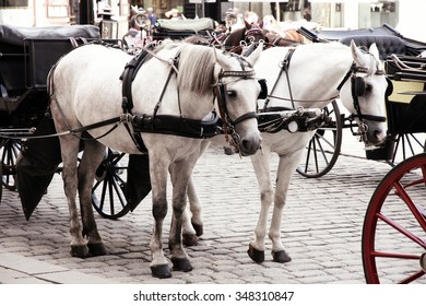 Couple Horse-drawn carts waiting for tourists at the main gate to Hofburg Palace in Vienna, Austria