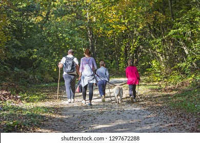 Couple with kids and dog walking by hiking trail in the autumn forest