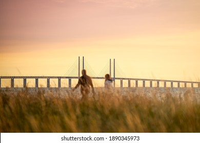 A couple looks out over the Öresund strait with the Öresund Bridge between Sweden and Denmark during sunset in Limhamn, Malmö.