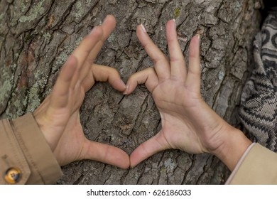 couple in love behind a tree