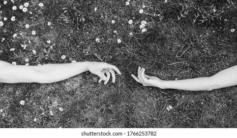 Couple in love. Man and woman hands. Hands couple. Grass background. Romantic. Lovely.
