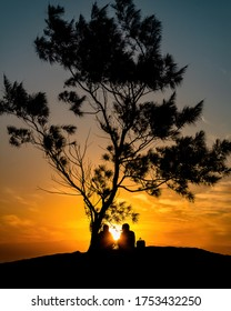 couple love in the sunset