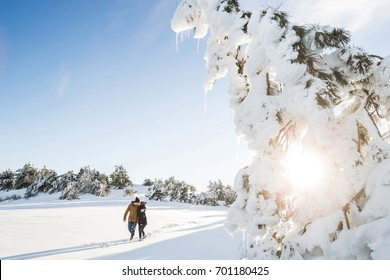 Couple in love walking in winter forest. Clear sky, sunny weather, clean snow