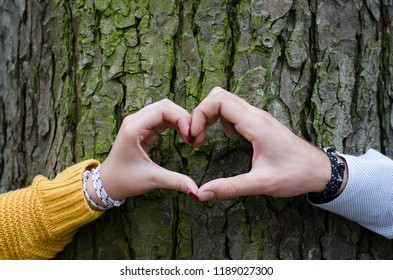 A couple makes heart shape with their hands before a tree in the park