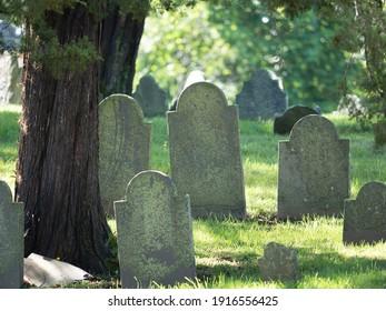 Couple of old gravestones next to a tree.