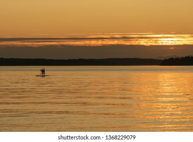 Couple on stand-up paddle boards in silhouette during golden hour sunset on calm water.