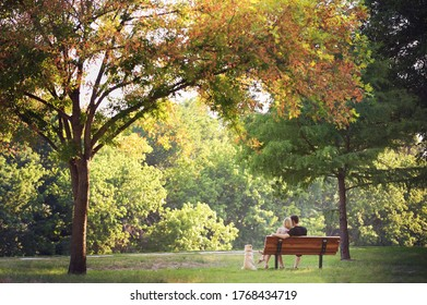 couple at the park with dog and large trees