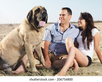 couple and pet dog enjoying time together on the beach.