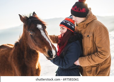 Couple petting and feeding horse with pleasure in shiny sunlight. Winter in mountains