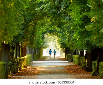 A couple running in the morning in a park