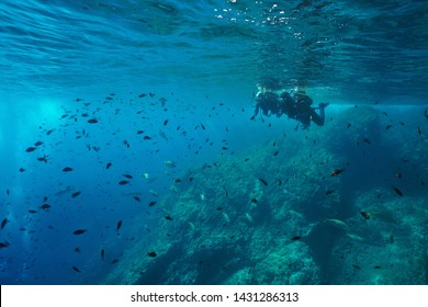 Couple of scuba divers on water surface look at a shoal of fish underwater, Mediterranean sea, Costa Brava, Spain