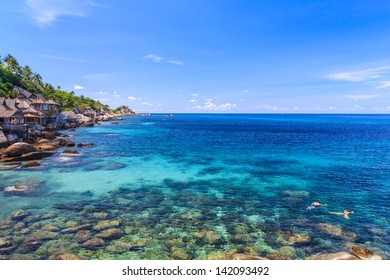 Couple snorkelling in crystal clear sea, Koh Tao, Samui, Thailand