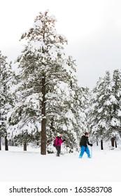 Couple Snowshoeing Through A Beautiful Winter Landscape