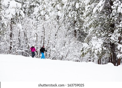 Couple Snowshoeing in a Winter Wonderland