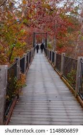 Couple Taking a Fall Walk