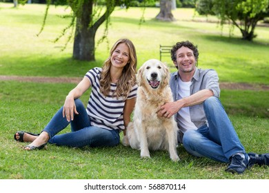 Couple with their dog in the park on a sunny day