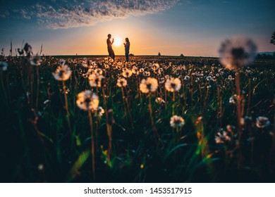 Couple together on spring dandelions field