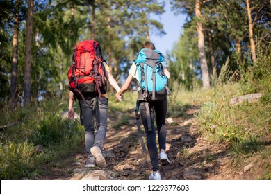 couple of tourists with backpacks hiking in a forest